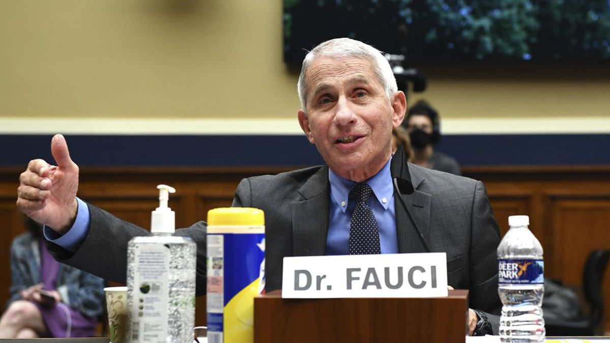 Director of the National Institute of Allergy and Infectious Diseases Dr. Anthony Fauci...