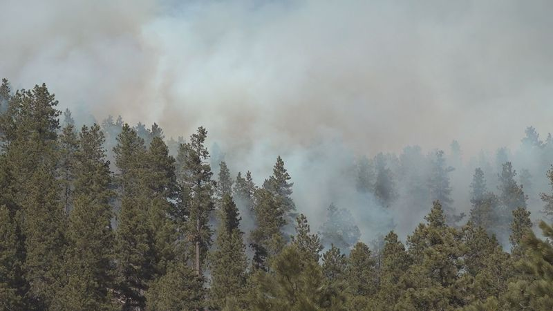 Broadcast burns are used by the U.S. Forest Service to reduce dry fuels that make the forest...