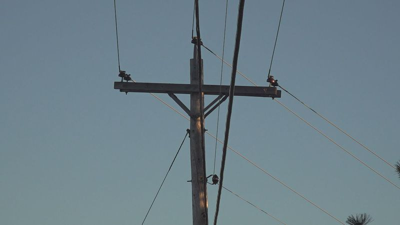 Residents woke up to strong winds, and even power outages in Rapid City, Custer, and Edgemont....