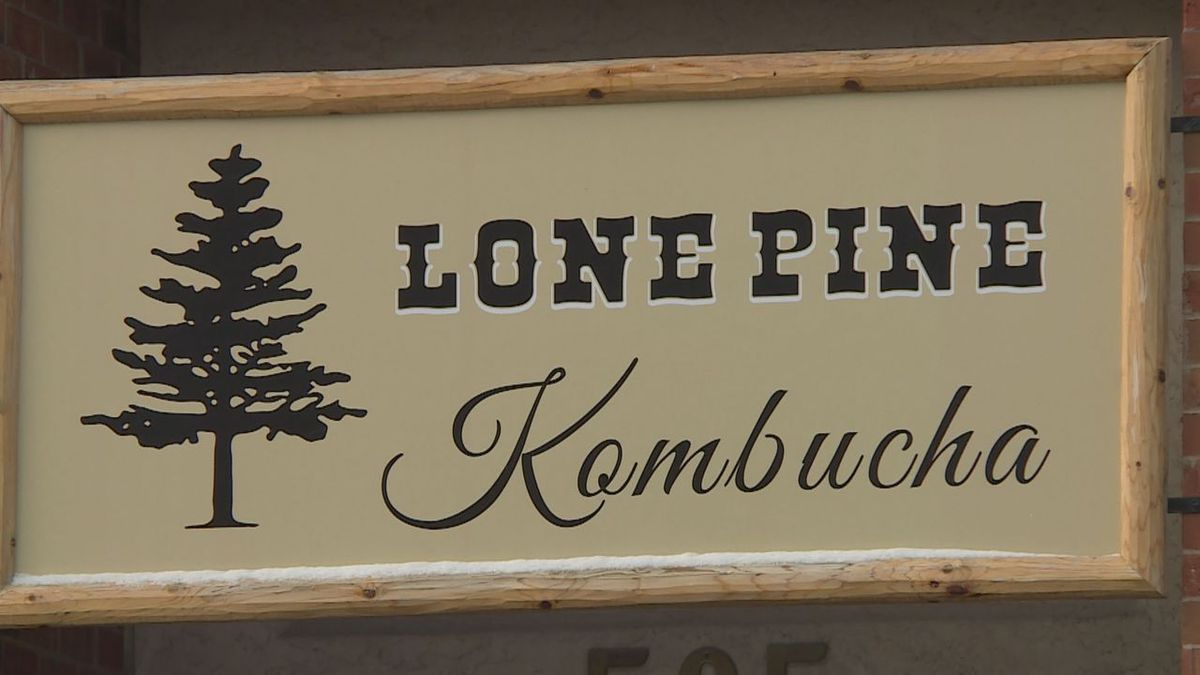 Lone Pine Kombucha has a regular rotation of at least 30 flavors throughout the year. (KEVN)