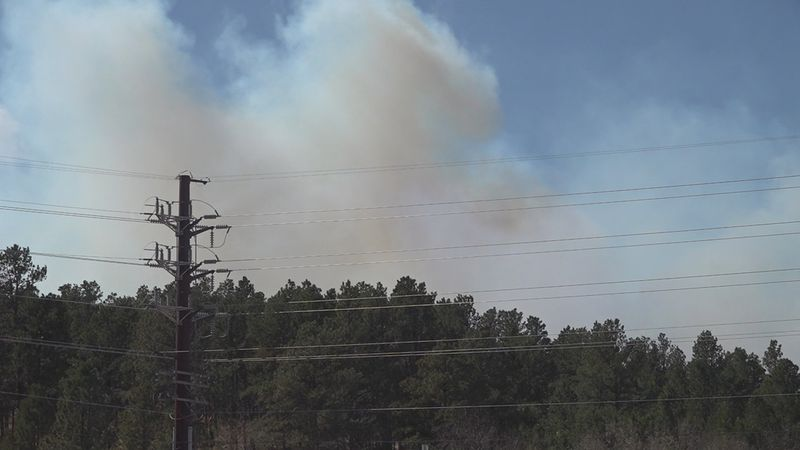 The wildfire at Schroeder Road and Nemo Road has continued to rapidly develop and more...